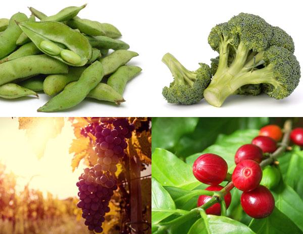 alimenti funzionali e nutraceutici